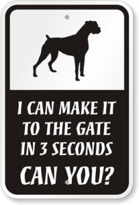 I Can Make It to the Gate in 3 Seconds, Can You?